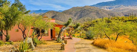 MISA-West-Tanque-Verde-Ranch-Arizona